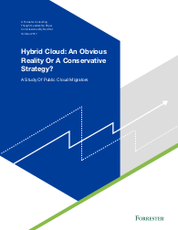 Hybrid Cloud: An Obvious Reality or A Conservative Strategy
