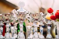 How to Create a Winning Awards Program