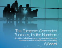 The European Connected Business, by the Numbers