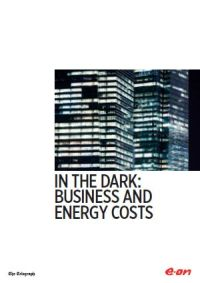 In the Dark: Business and Energy Costs