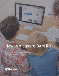 How To Measure DAM ROI