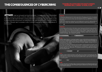 The Consequences of Cybercrime