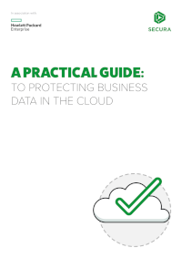 A Practical Guide to Protecting Business Data in the Cloud