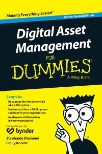 Digital Asset Management for Dummies