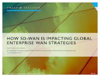 How SD-WAN is Impacting Global Enterprise WAN Strategies