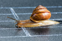 How to Manage Cash Flow When Things Are a Bit Slow