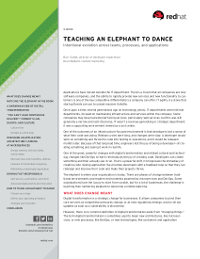 Teaching An Elephant To Dance