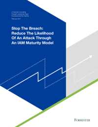 Reduce the Likelihood of an Attack Through an IAM Maturity Model