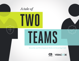 A Tale of Two Teams: Security and Development Roles in Securing Code